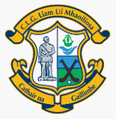 Liam Mellows Hurling & Camogie Camp
