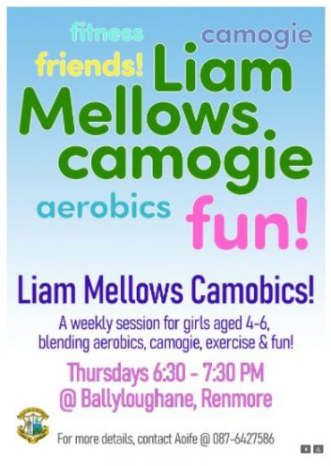 Liam Mellows Camogie Club