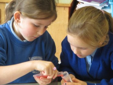 Science Week with Cell Explorers: Fantastic DNA