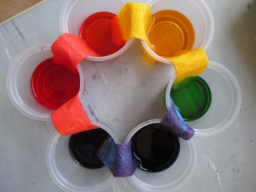 Making a Colour Wheel with Food Dye