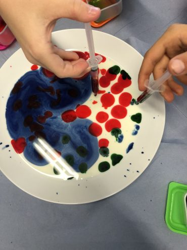Fats & Enzymes Science Experiment